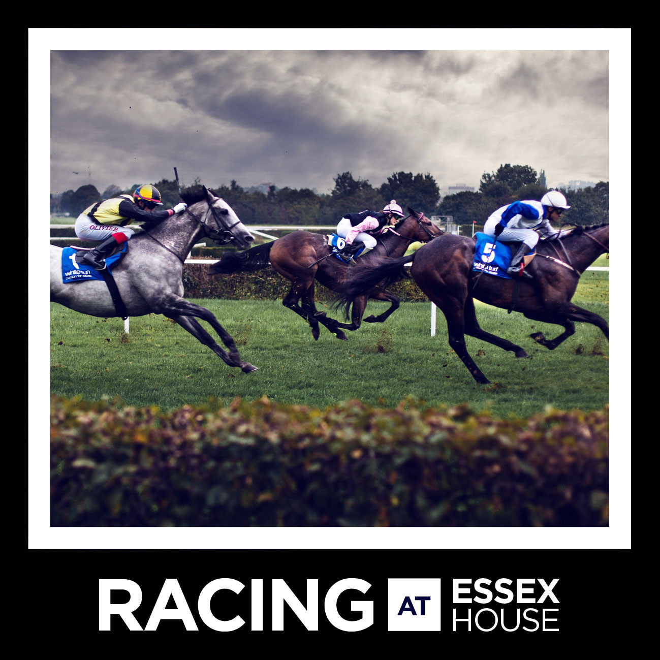 Horse-Racing-A6-Square